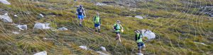 Four competitors running downhill with green t-shirts on with contour lines